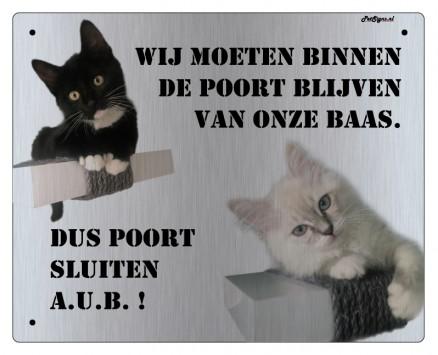 waakbord eigen foto katten